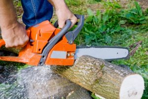 Which is Better: Electric or Gas Chainsaw?