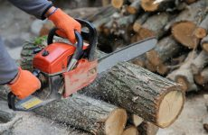 "WORX 16"" Amp Electric Chainsaw Review: All You Need To Know!"