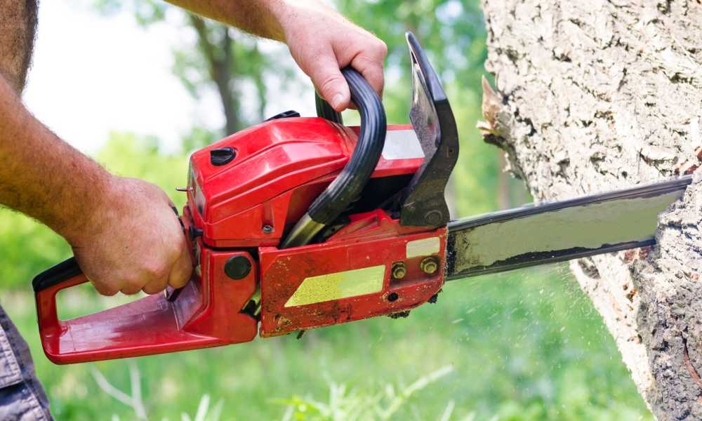 The Best Battery Powered Chainsaw