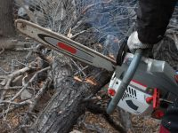 Are Electric Chainsaws Any Good At All?