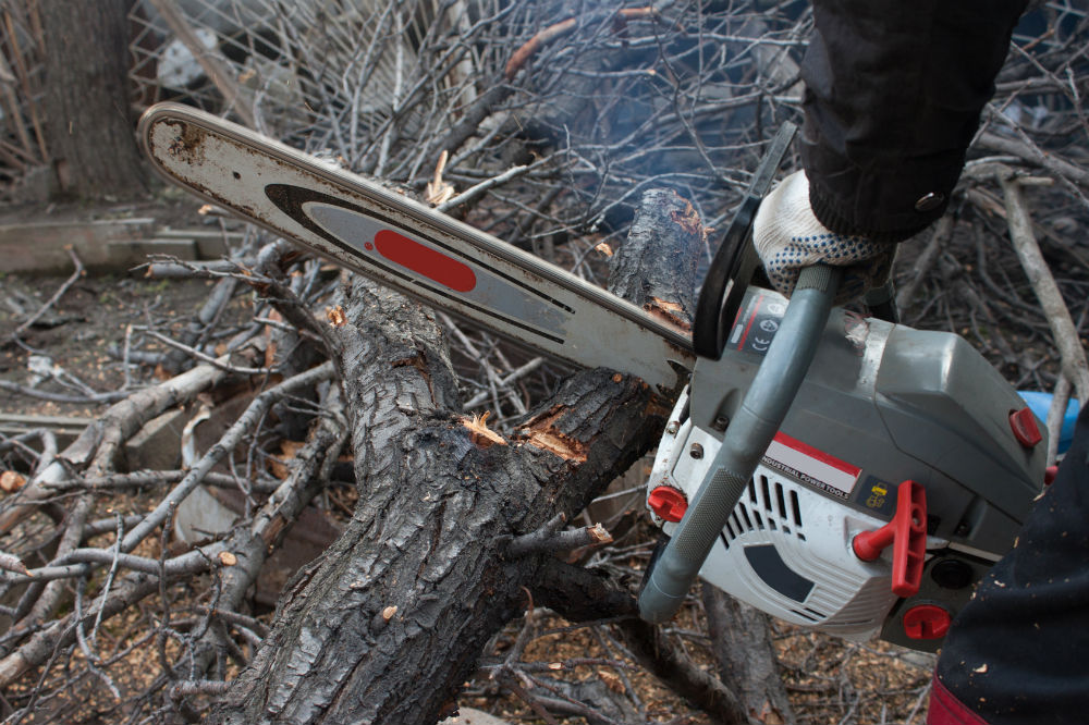 Are Electric Chainsaws Any Good At All