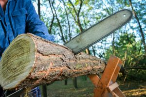 Which is The Best Cordless Chainsaw?