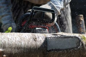 Electric Chainsaw Ratings: How to Make the Right Choice